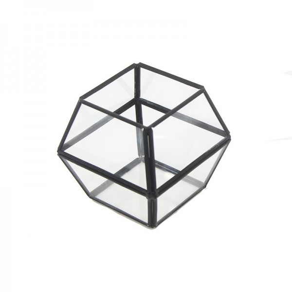11x10cm Cam Fanus Çokgen Prizma Terrarium