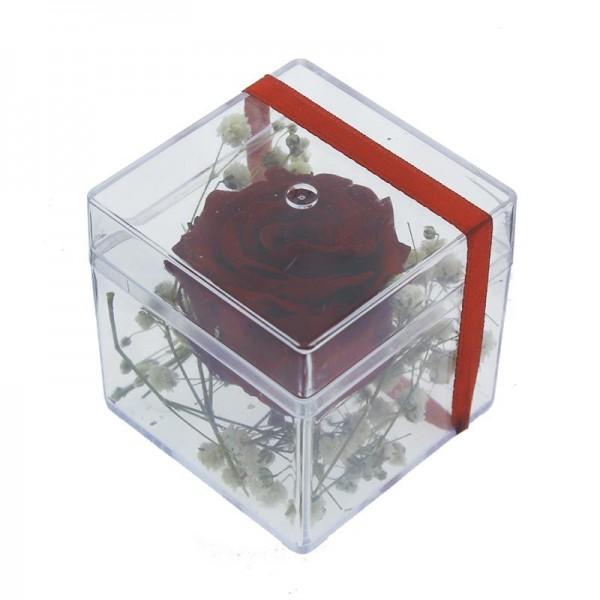 5x5cm Kutu içinde Uzun Ömürlü Solmayan Gerçek Kırmızı Gül