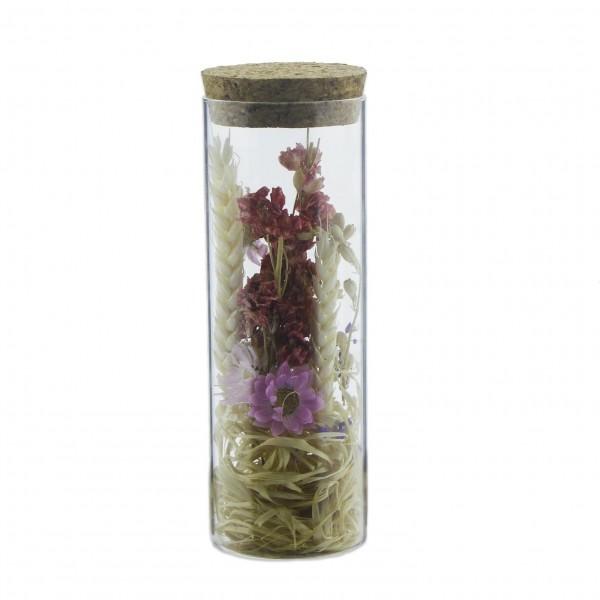 Cam Tüp İçinde Doğal Uzun Ömürlü Kuru Çiçek Başaklı