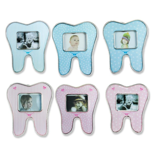 Diş Çerçeve Karışık Model 12 Adet