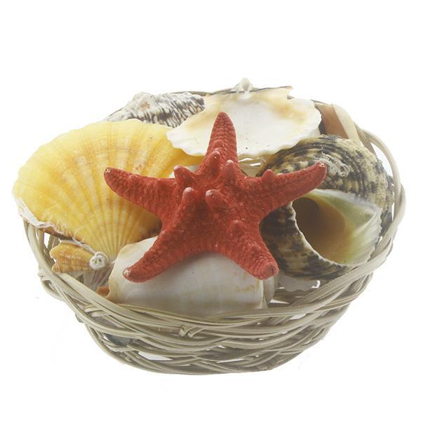 Karışık Deniz Kabukları Dekor Seti Sepette